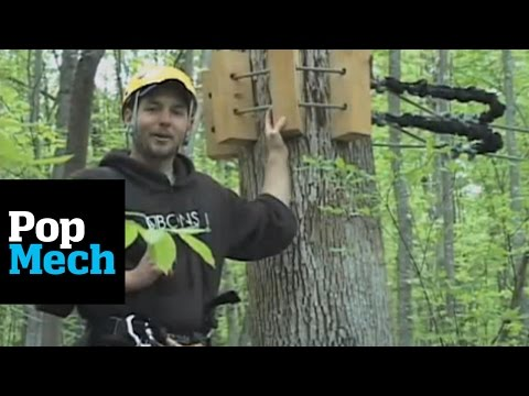 Treetops Zip Line Canopy Tours by Bonsai Designs | PopMech