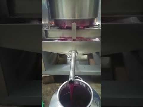 fruit and vegetable cold press juicer