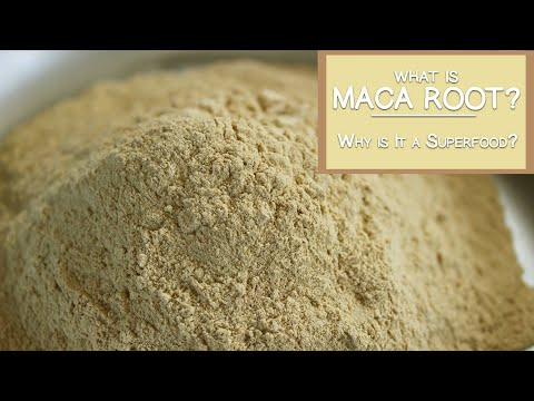 What is Maca Root and Why is It a Superfood?