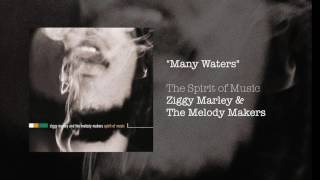 Many Waters - Ziggy Marley & The Melody Makers | The Spirit of Music (1999)