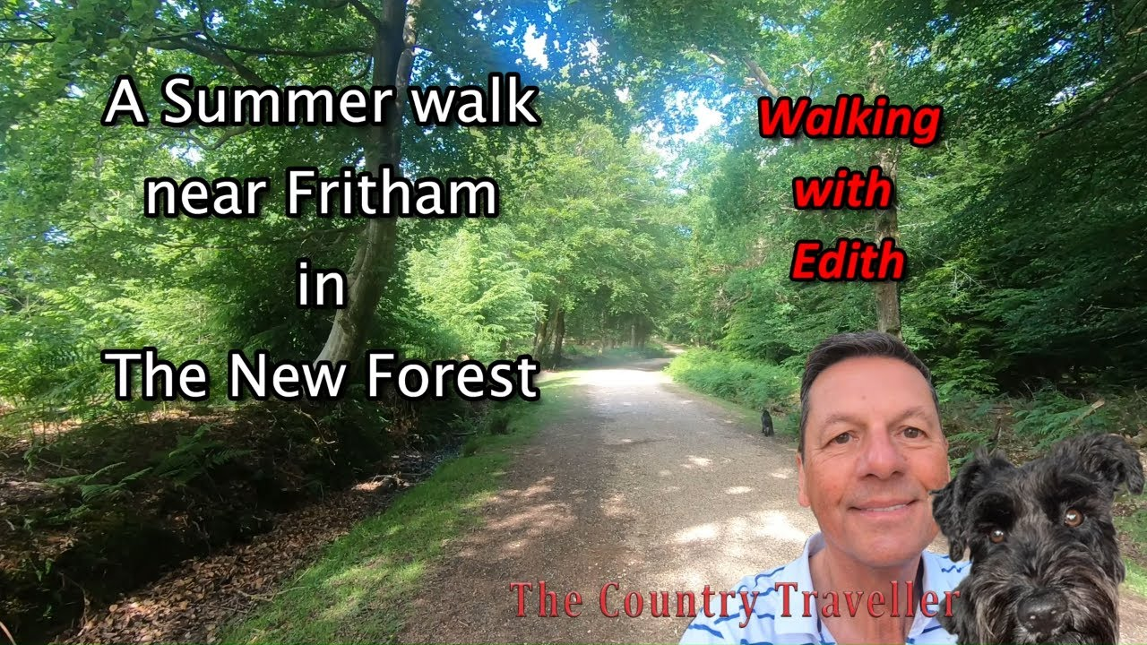 A July walk near Fritham in The New Forest