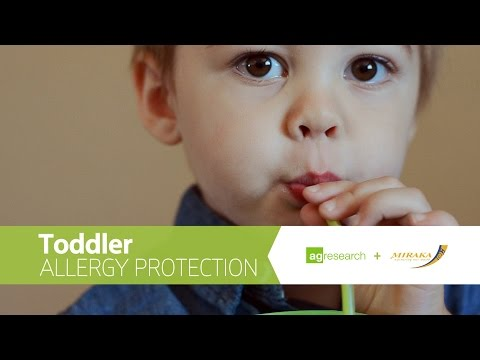 Toddler allergy protection – A new research project funded by High-Value Nutrition