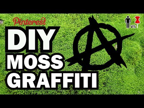 DIY Moss Graffiti - Man Vs. Pin #24