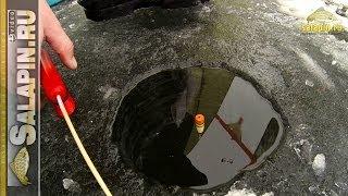 Зимние поклевки подлещика: классический поплавок, отводной поводок, мормышка [salapinru].