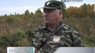 Что делать при встрече с Медведем(, 2013-09-27T03:49:40.000Z)