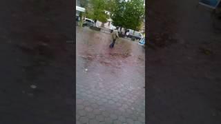 Жмеринка рулить)))