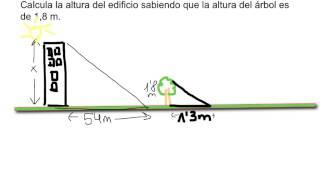 Calcular altura utilizando triángulos semejantes