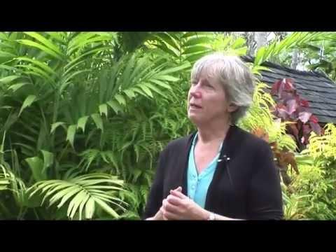 Expert Q&A - Professor Cindy Van Dover