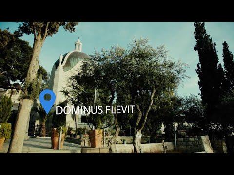 Mount of Olives: Palm Sunday