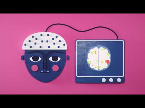 The Neuroscience of Perception