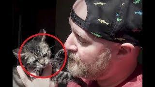 Он приютил 4-х котят, но одного из них не стало. Тогда мужчина сделал это