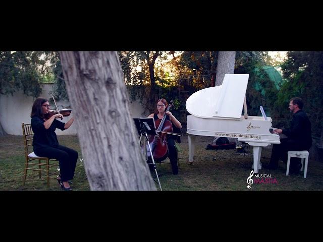 BODAS DE CINE Titanic BSO - El Estudio de Ana Celine Dion violin cover