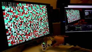 FPGA: Verilog video core with the RISCV PicoSoC!