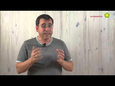Entrevista Francisco Romero