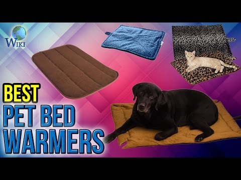 10 Best Pet Bed Warmers 2017
