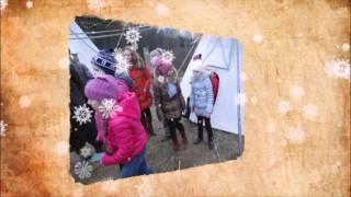 Экскурсия в эко питомник собак породы Сибирский хаски