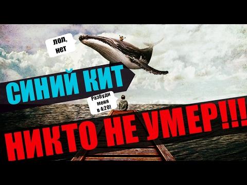 Вопрос: Почему синий кит при питании переворачивается набок или на спину?