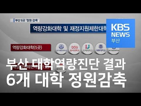 [다시보기] 대학역량진단 결과 부산 6개 대학 정원감축