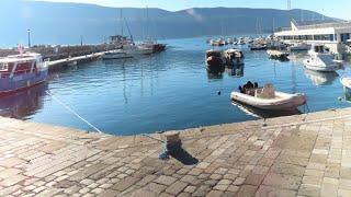Стрим Переезд В Черногорию 2020