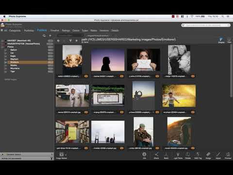Creating and Sorting Portfolio Collections