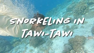 Snorkeling in Tawi-Tawi (What You Don't Know) the Creative Life - Ep1