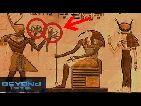 Psychedelics in Ancient Egypt with Christopher Everard - Beyond The Veil