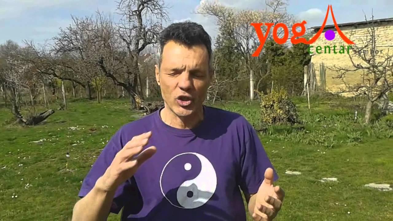 Međunarodni Intezivni Kurs Zdravstveno Či kunga (Ći kung, Qigong)