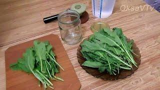 Как заготовить щавель на зиму легко и быстро. how to prepare sorrel for the winter