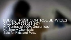 Pest Control Miami | (754) 333-1464 | Pest Control In Miami FL  | 33169 | 33055 | 33056