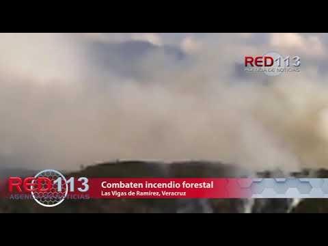 VIDEO Combaten incendio forestal