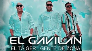 Смотреть клип El Taiger Ft. Gente De Zona - El Gavilan