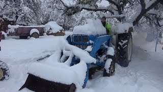 1966 Ford 4000 Tractor Cold Start