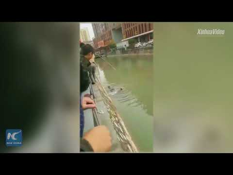Hand in hand, passersby save drowning man in central China