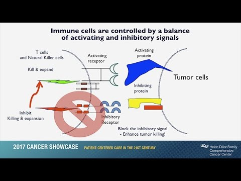 Immunotherapy: Unleashing the Body's Natural Defense Systems to Fight Cancer