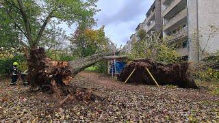 """Sturm """"Ignatz"""": Beschädigte Häuser und lahmgelegter Bahnverkehr"""