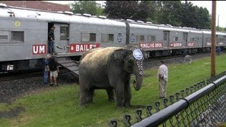 Ringling Brother Barnum and Bailey Circus Train Bound for Hershey, PA