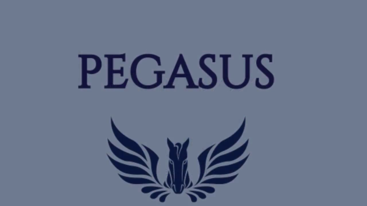pegasus coin cryptocurrency