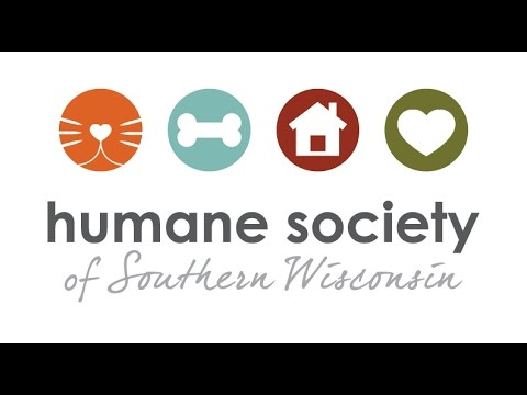 Humane Society Of Southern Wisconsin Youtube