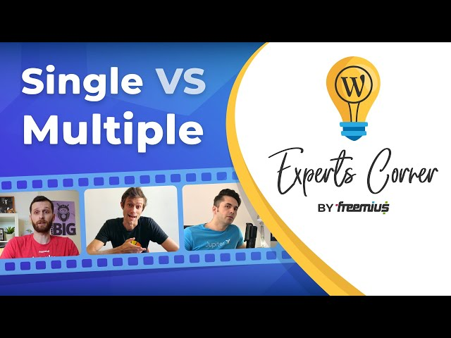 Selling a Single WordPress Plugin or Theme Vs. Multiple Products - Experts Corner
