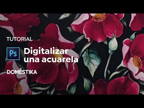 Tutorial Acuarela: Cómo Digitalizar Y Retocar - Canela Estudio - Domestika