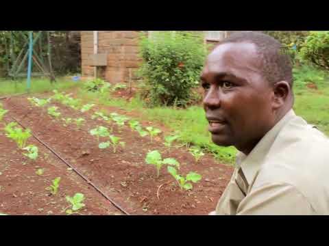 SunCulture - Kenya Part 2