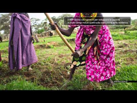 Resilienza WFP (IT)