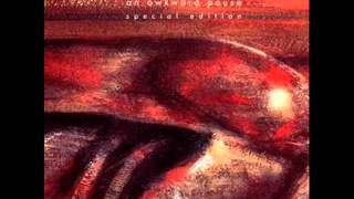 Nurse With Wound - Intravenous
