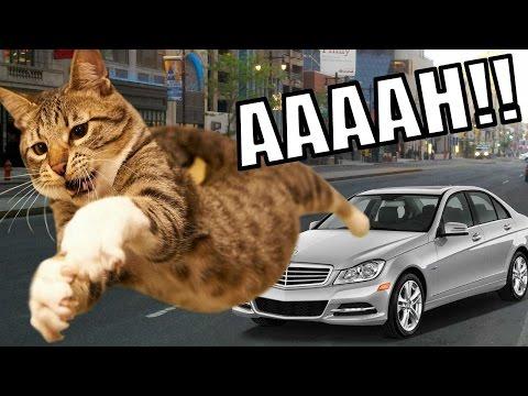 NOOOOOOOOO, MI GATO!! | GTA V (2) - JuegaGerman