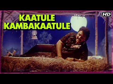 Kaatule Kambakaatule Full Song   Rajakumaran Movie Songs   ராஜகுமாரன்   Prabhu   Meena   Ilaiyaraja