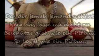 FARD - Pitbull Lyrics [#BFHFA] [#07.10.16]