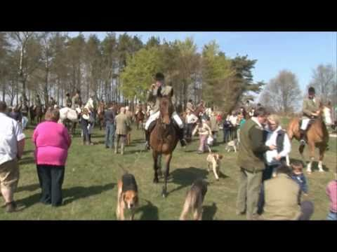 The Quantock Staghounds On A Law That's Not Working