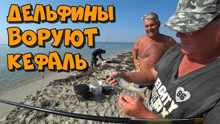 Рыбалка на кефаль Лучший отдых на Черном море Лазурное Херсонская область