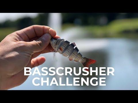 Hard Body Swim Bait Lure Challenge ( Bass Crusher)