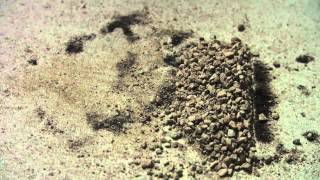 HHO Experimente - Sand platinieren Teil 2 - Tipps/Update